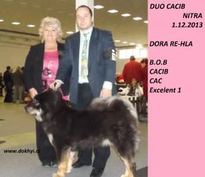 dora-re-hla-b.o.b.-na-duo-cacib-nitra-fc.jpg