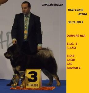 dora-re-hla-b.i.g.3.misto-na-duo-cacib-nitra-fc.jpg