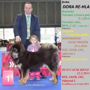 dora-re-hla-cz-www-trencin-brno--olomouc-2014duo-cacib-int.jpg